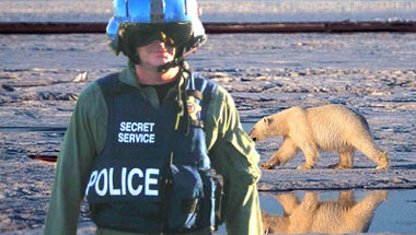 Bush Grants Secret Service Protection To Polar Bear