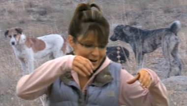 Palin: 'Alaska' Dog-Clubbing Taken Out Of Context